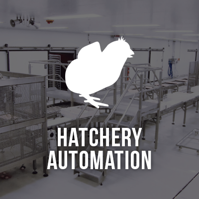 Viscon Hatchery Automations